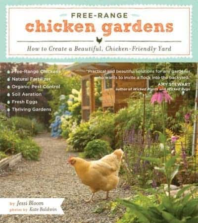 Free-range chickens in the garden on the Web: