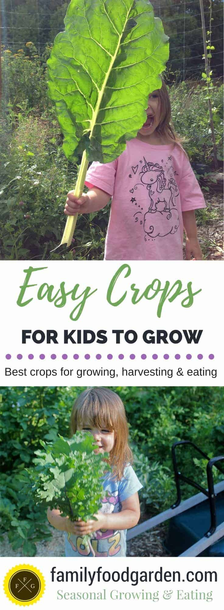 Easy seeds for little hands to grow, harvest & eat from the garden