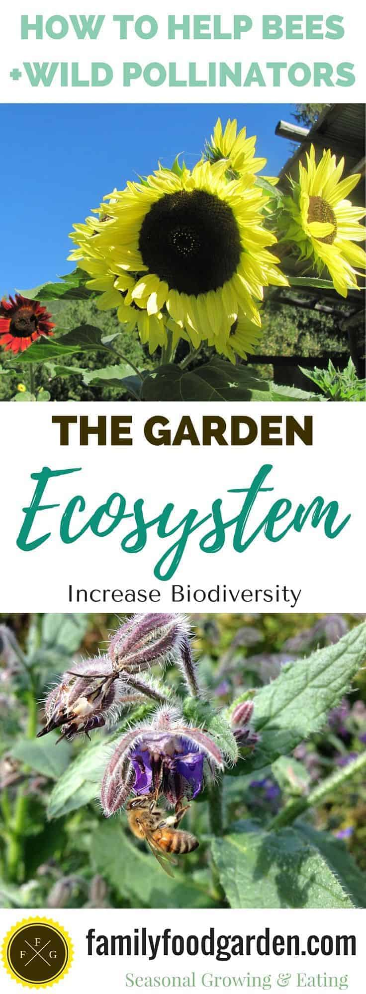 The importance of creating biodiversity for better gardening