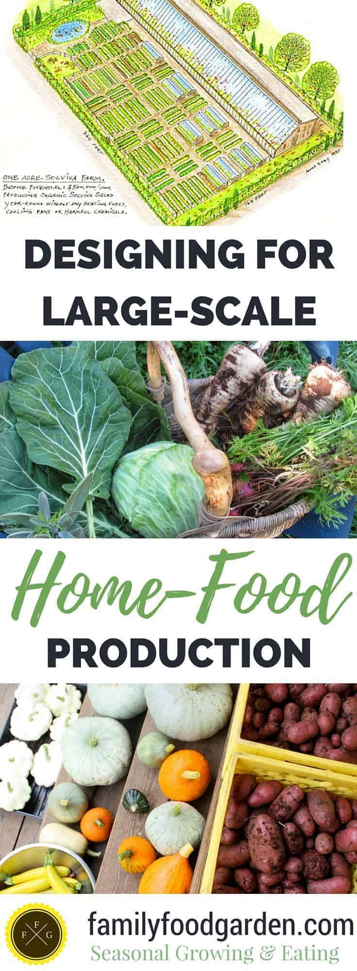 Achieving Large Scale Food Production By Growing All Of Your Fruits U0026  Vegetables On 1