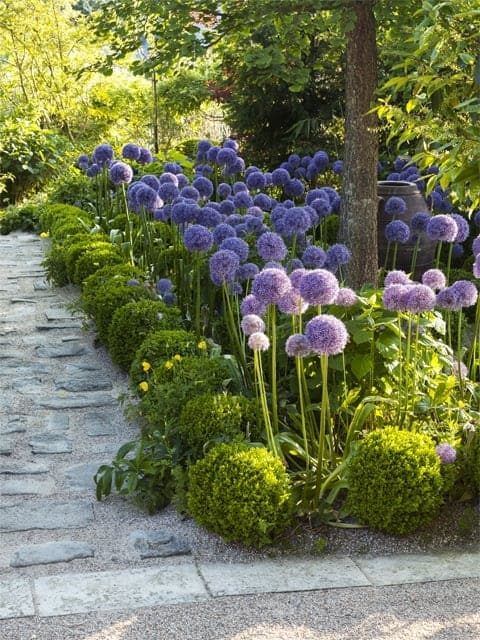 There Are So Many Garden Design Ideas Out There Itu0027s Hard To Choose When Planning  Your Garden.