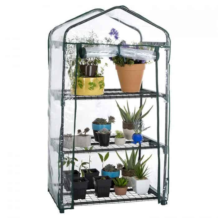 Where to Buy a Mini Greenhouse