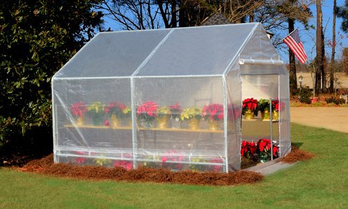 Greenhouse Kits, Mini/Small Greenhouses for Sale & DIY Greenhouses