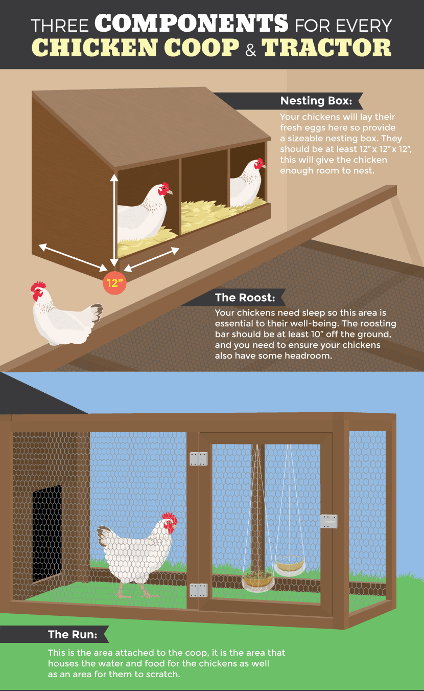 Chicken tractors as a mobile chicken coop