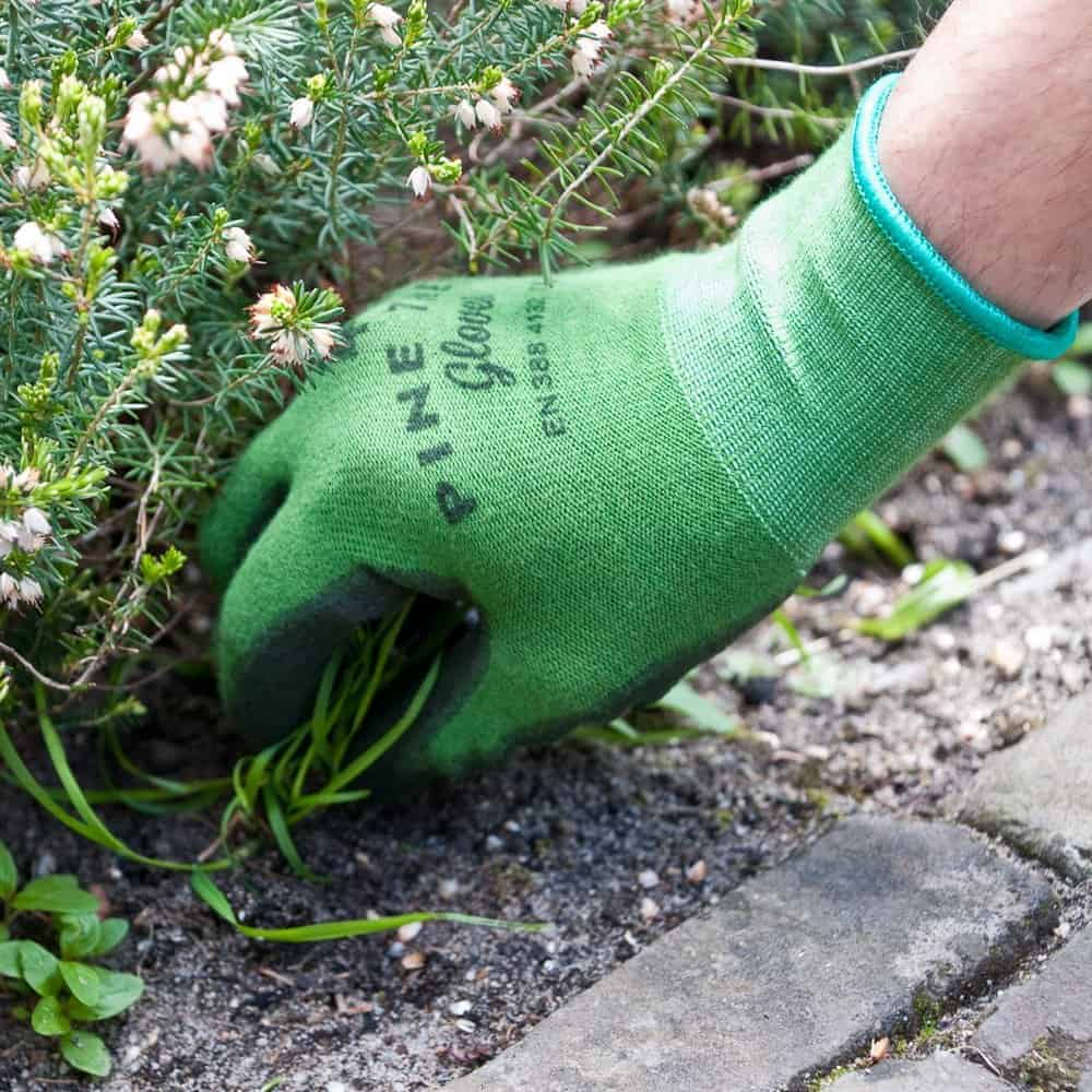 Gardener gifts- good pair of garden gloves