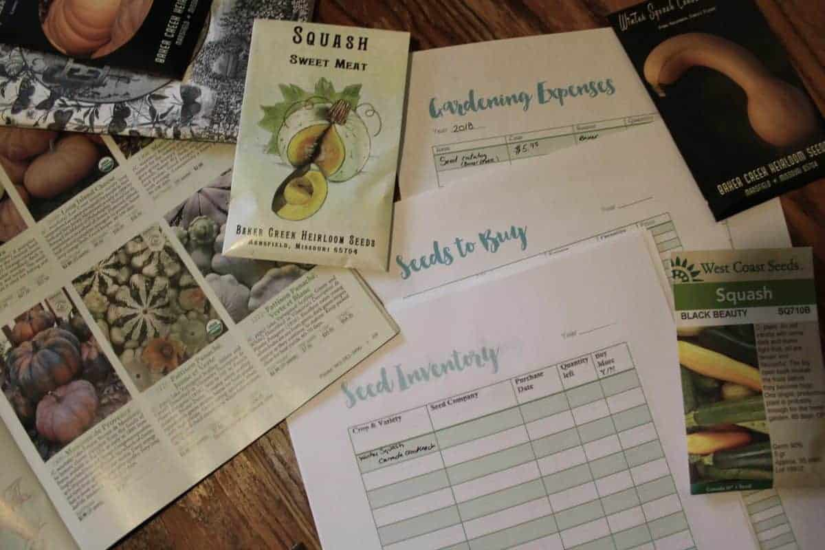 How to order seeds from seed catalogs